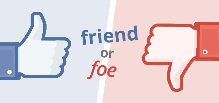 Software system friend or foe