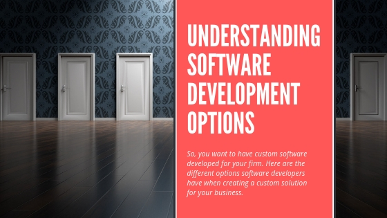 Understanding software development options