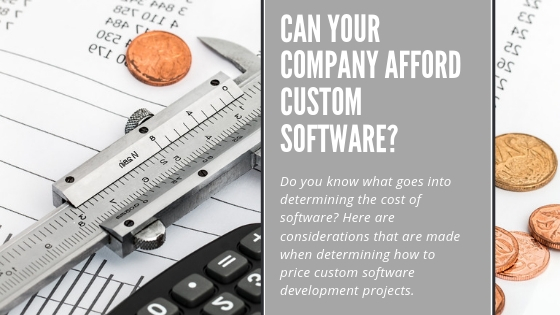 Custom software cost