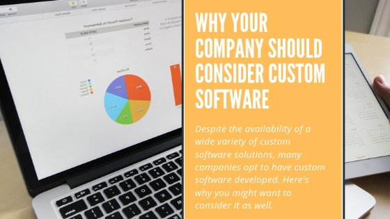 Why consider custom software