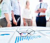 Software Consulting Business Analysis
